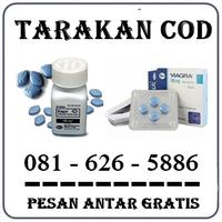 Agen Farmasi Herbal { 0816265886 } Jual Obat Kuat Di Tarakan logo