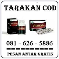 Agen Farmasi Herbal { 0816265886 } Jual Obat Vitamale Di Tarakan logo