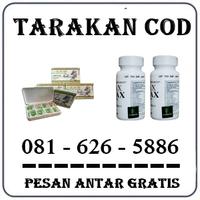 Agen Farmasi Herbal { 0816265886 } Jual Obat Pembesar Penis Di Tarakan logo