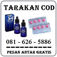 Agen Farmasi Herbal { 0816265886 } Jual Obat Perangsang Wanita Di Tarakan logo