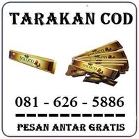 Distributor Herbal { 0816265886 } Jual Permen Soloco Di Tarakan logo