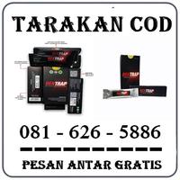 Distributor Herbal { 0816265886 } Jual Obat Bentrap Di Tarakan logo
