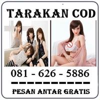 Distributor Herbal { 0816265886 } Jual Boneka Full Body Di Tarakan logo