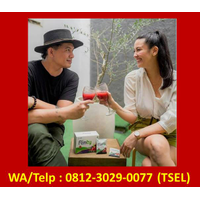 Agen Flimty Bener Meriah  Wa/Telp: 0812-3029-0077 (Tsel) logo