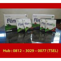 Agen Flimty Jakarta Barat | WA/Telp : 0812-3029-0077 (TSEL) Distributor Flimty Jakarta Barat logo