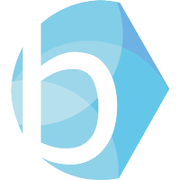 Bright Blue logo