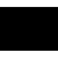 The Positive Print Company logo