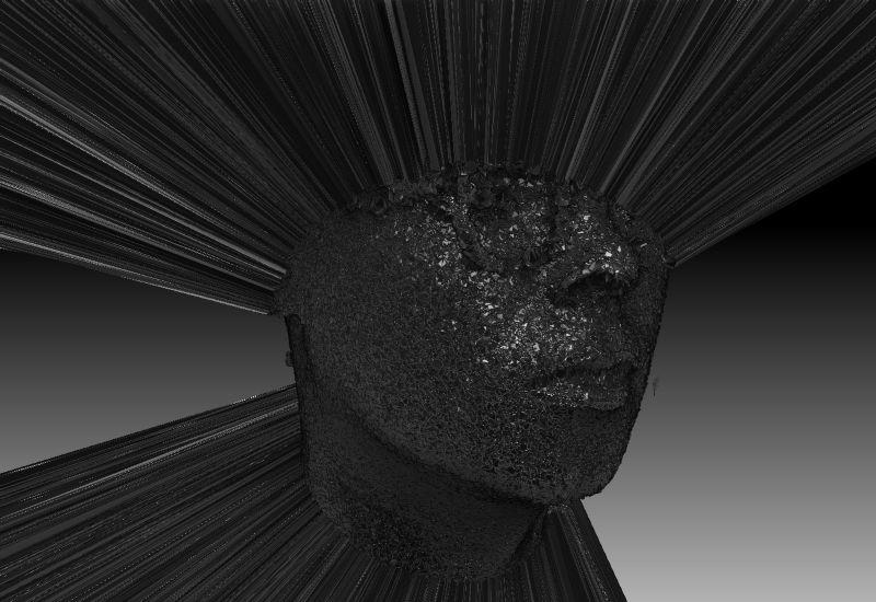Disguise 3d head scan