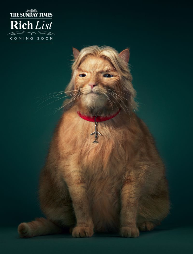Sunday Times Rich List 'Fat Cats'