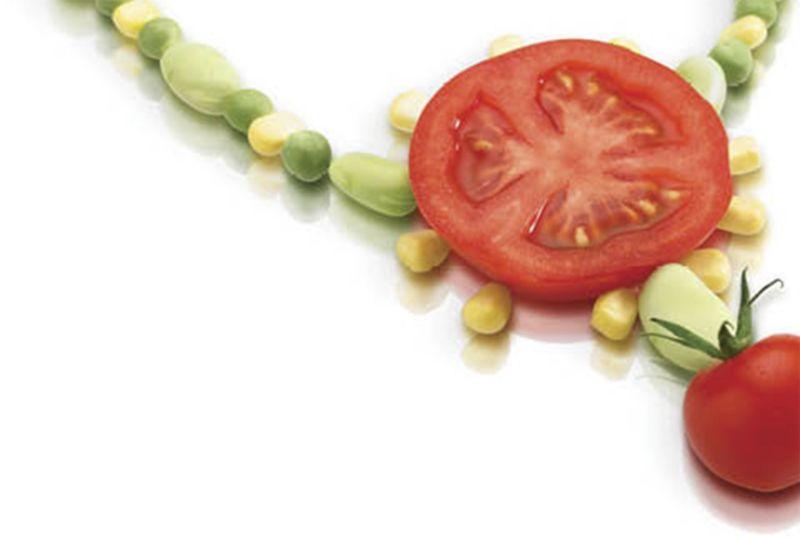 Debenhams - Make Our Food The Fashion