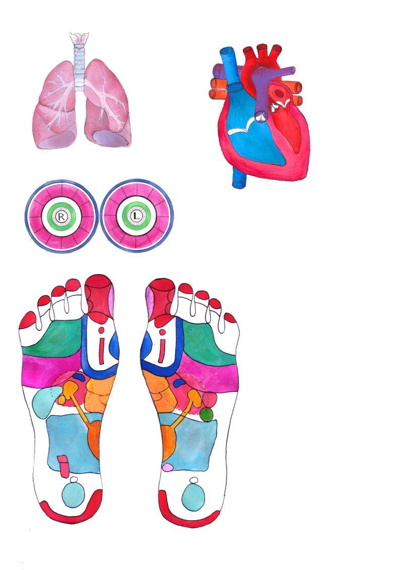 Illustrating a medical book
