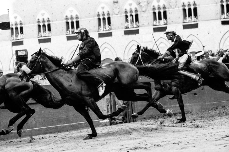 The Great War of Siena - The Palio