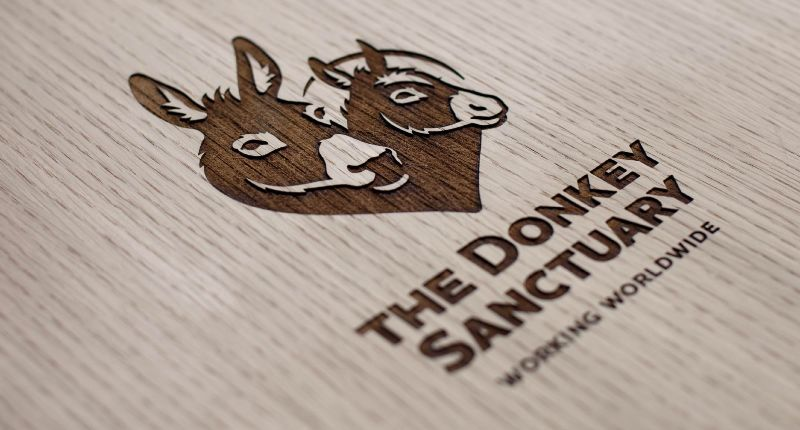 Growing the emotional legacy of The Donkey Sanctuary