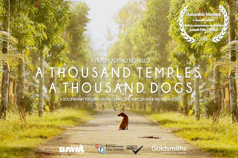A Thousand Temples, A Thousand Dogs
