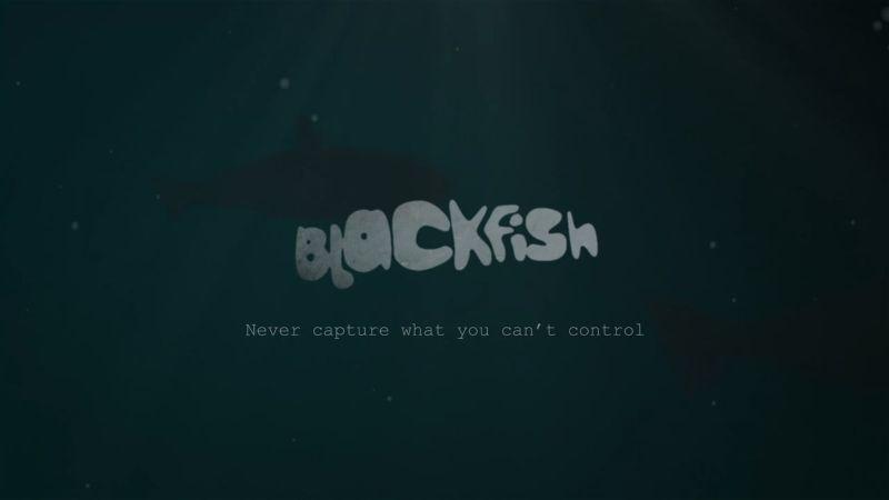 Blackfish Promo