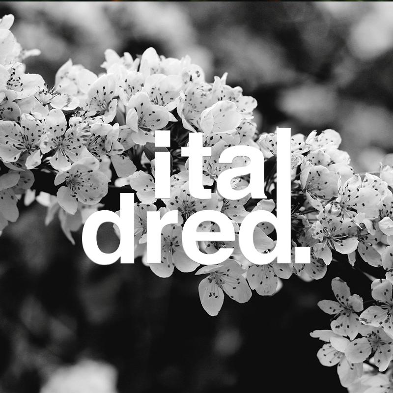 Italdred Records