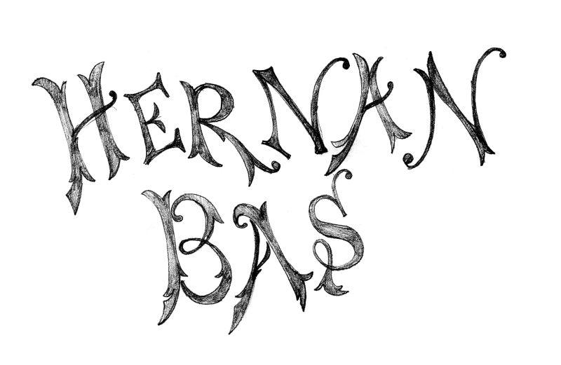 Hernan Bas monograph