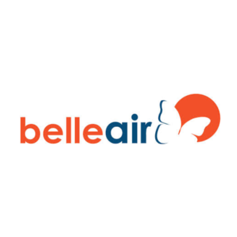 "Graphic design for a questionnaire for the airline company  ""Belle Air"""