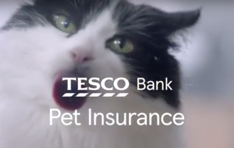 Tesco Bank - Pet Insurance Research Group