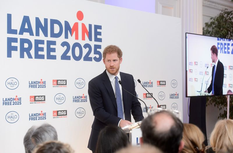LandmineFree2025