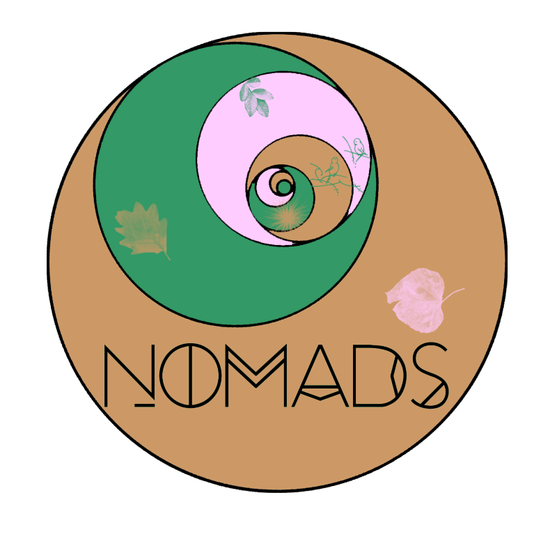 NOMADS || Yoga || Dance || Personal Trainer
