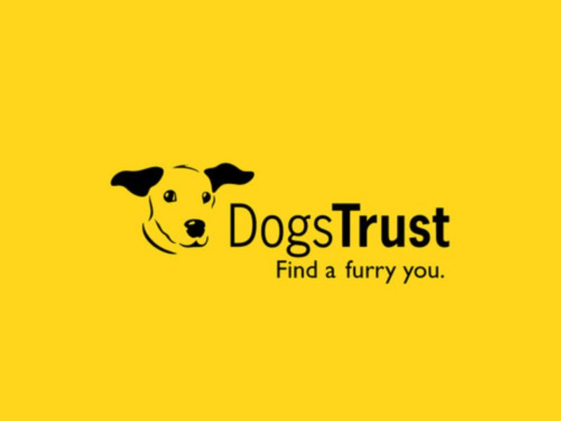 Dogs Trust - Find a Furry You