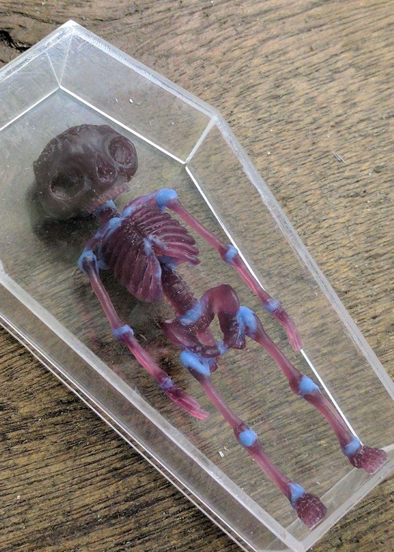 Miniature Skeleton
