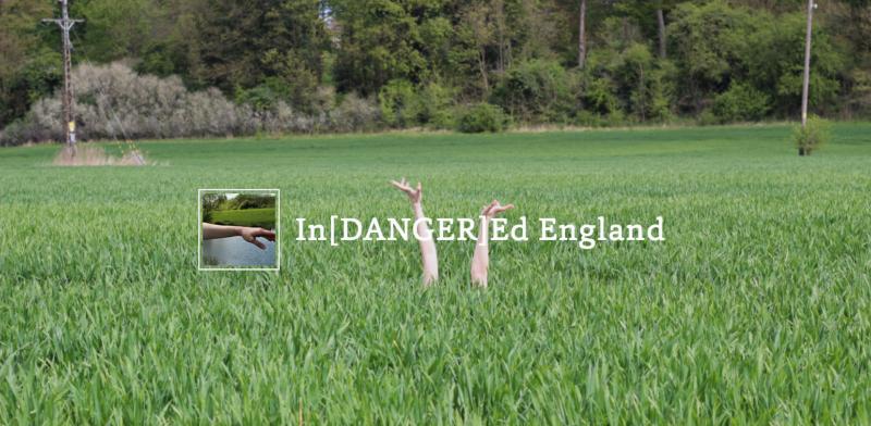 In[DANGER]Ed England