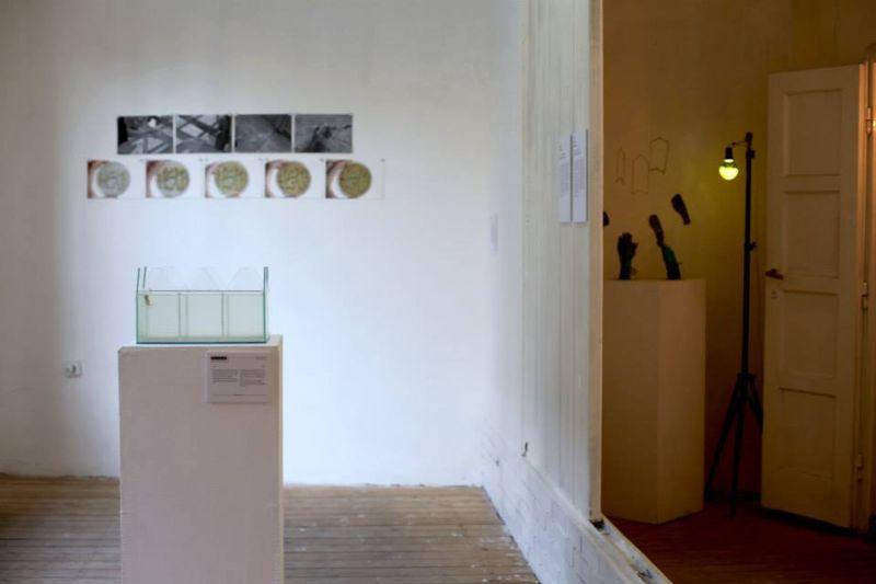 """exhibition """"Vazduh kao celina"""""""