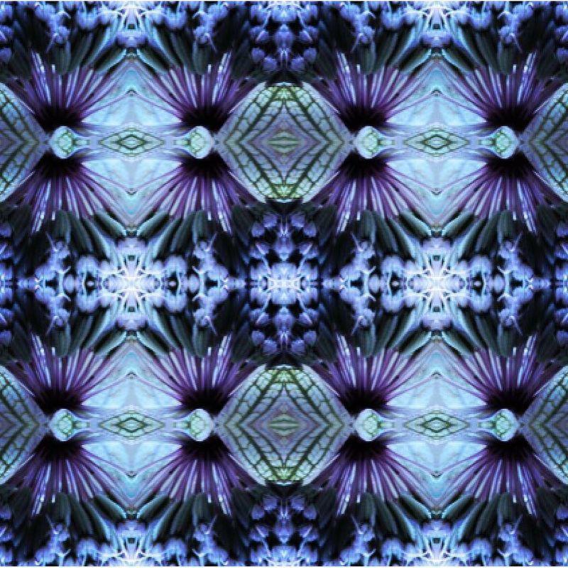 Flos Print Series