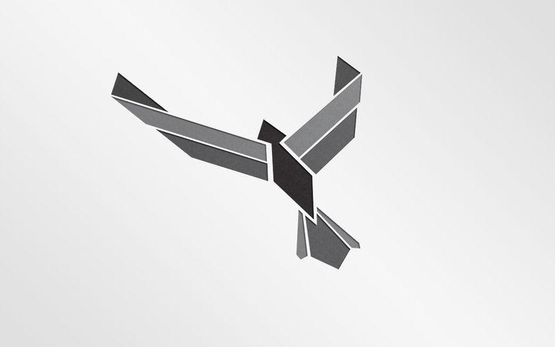 """Team """"Airforce"""" Icon Design"""