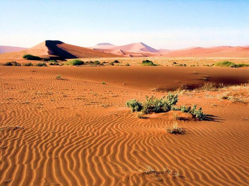 """""""Buried Memory in Namibia's Seas of Sand"""""""