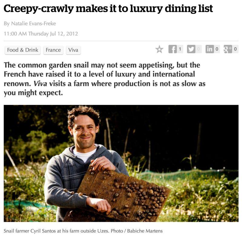 Creep Crawly Makes It To Luxury Dining LIst