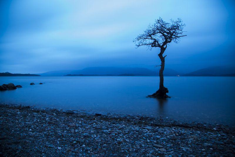 Scotland Landscape Project