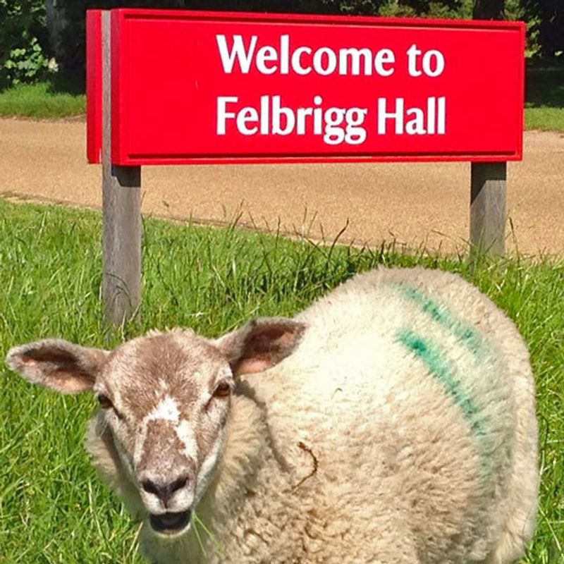National Trust Felbrigg Hall