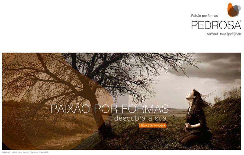 Flash web for Pedrosa