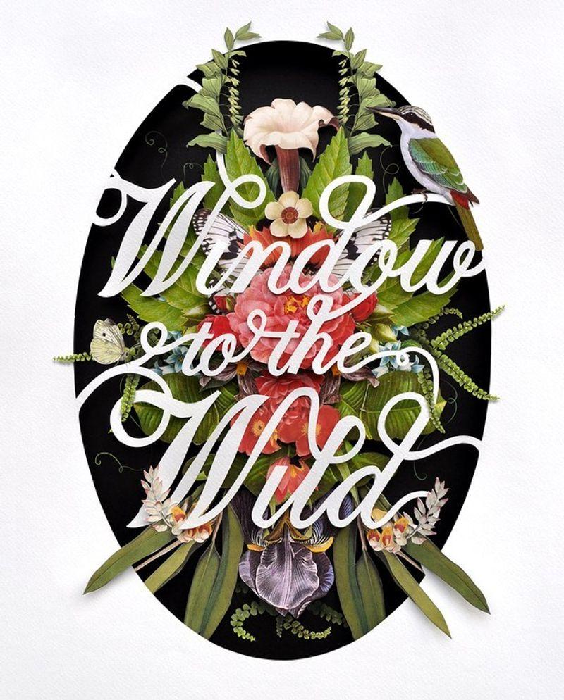 Window to the Wild