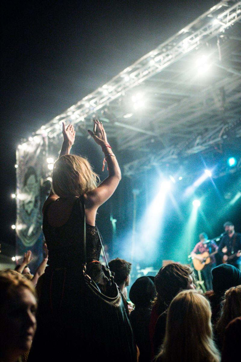 LeeFest Music & Arts Festival 2014