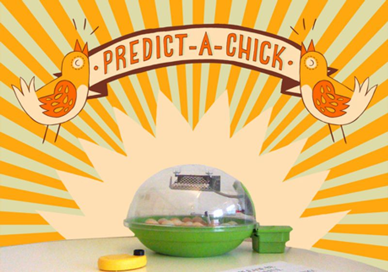 Orange: The Feed 2011 - 2012
