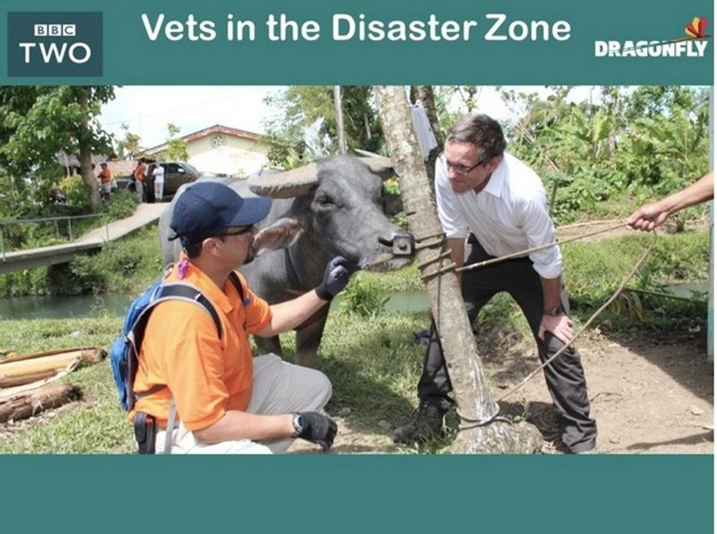 VETS IN THE DISASTER ZONE
