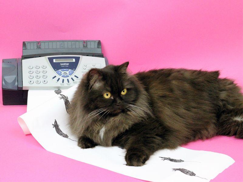 Unconventional Fax Machine