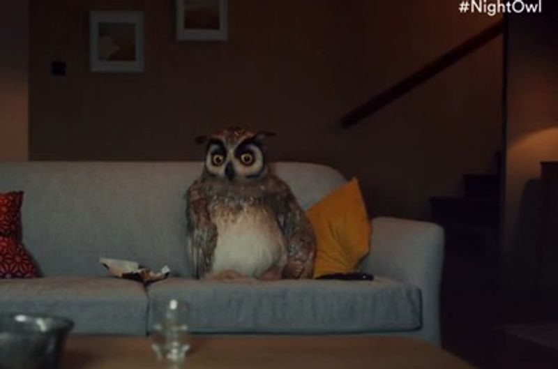Virgin Media - Night Owl