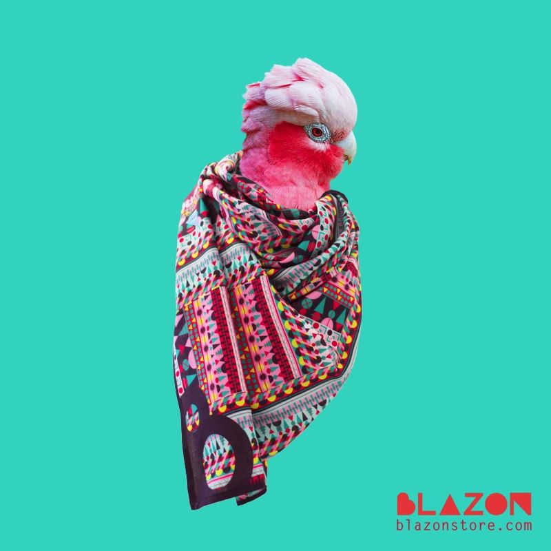 Blazon Scarves