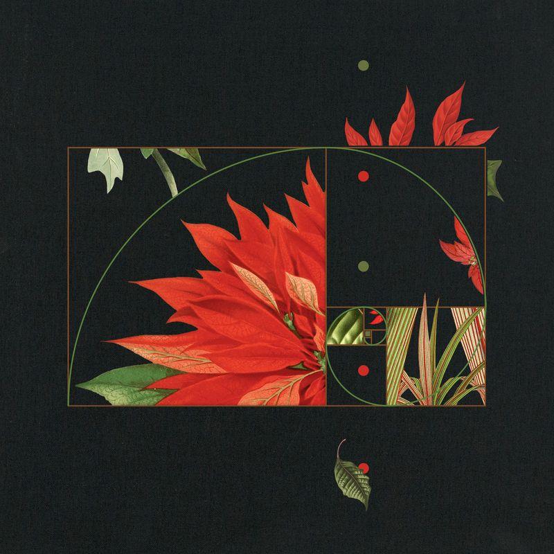 Fibonacci / Poinsettia Sequence