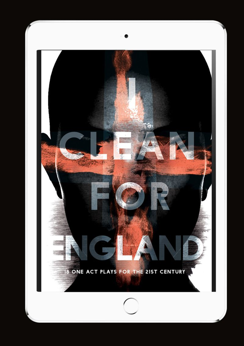 I Clean for England Book Cover