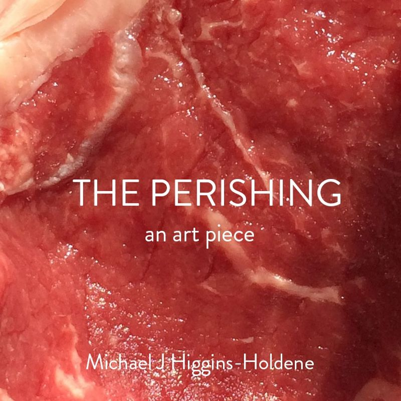 The Perishing - An Art Piece