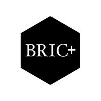 BRIC+ media